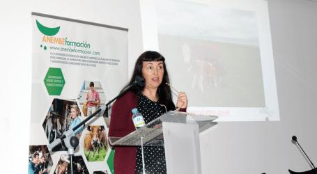 Boehringer Ingelheim y el BVD presentes en la 5º edición del Seminario ANEMBE de producción de vacuno de carne