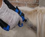 El Gobierno aprueba la normativa sobre transmisión electrónica de prescripciones de antibióticos en ganadería