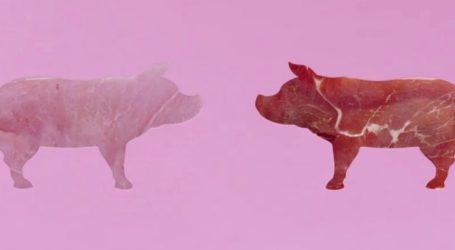 'SILUETAS' lleva a la televisión los múltiples beneficios nutricionales de la carne de cerdo