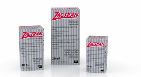 ZACTRAN® amplía su espectro de acción con una nueva indicación para PORCINO frente a B. bronchiseptica