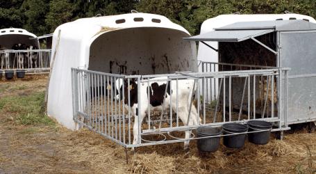 Factores de riesgo asociados con la aparición de bacterias resistentes a  antibióticos en terneros lactantes