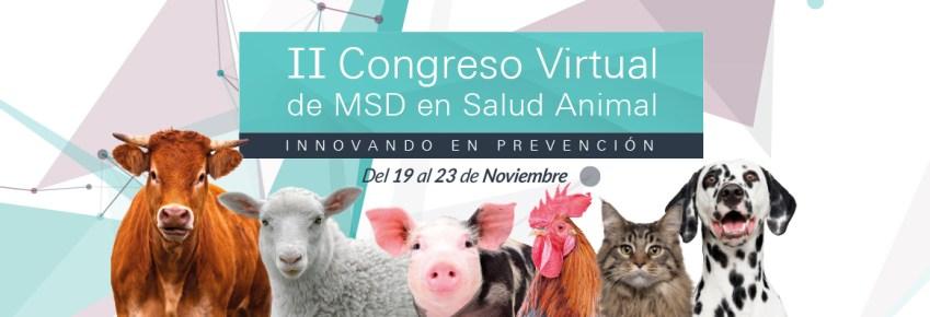 Cabecera congreso virtual