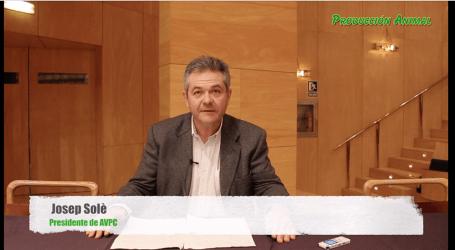 Josep Solè comenta en exclusiva para Producción Animal el programa de las Jornadas de Porcino de la UAB/AVPC