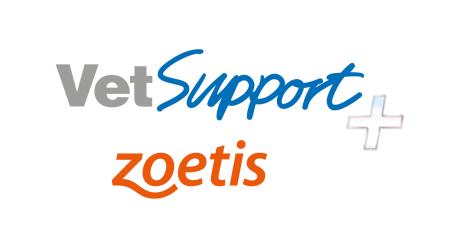 En el marco de los servicios Vet Support, Zoetis forma a más de 750 veterinarios especializados en porcino durante el 2020