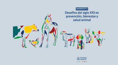 El enfoque One Health prioriza la mejora del bienestar animal y el avance imparable de la protección de los animales
