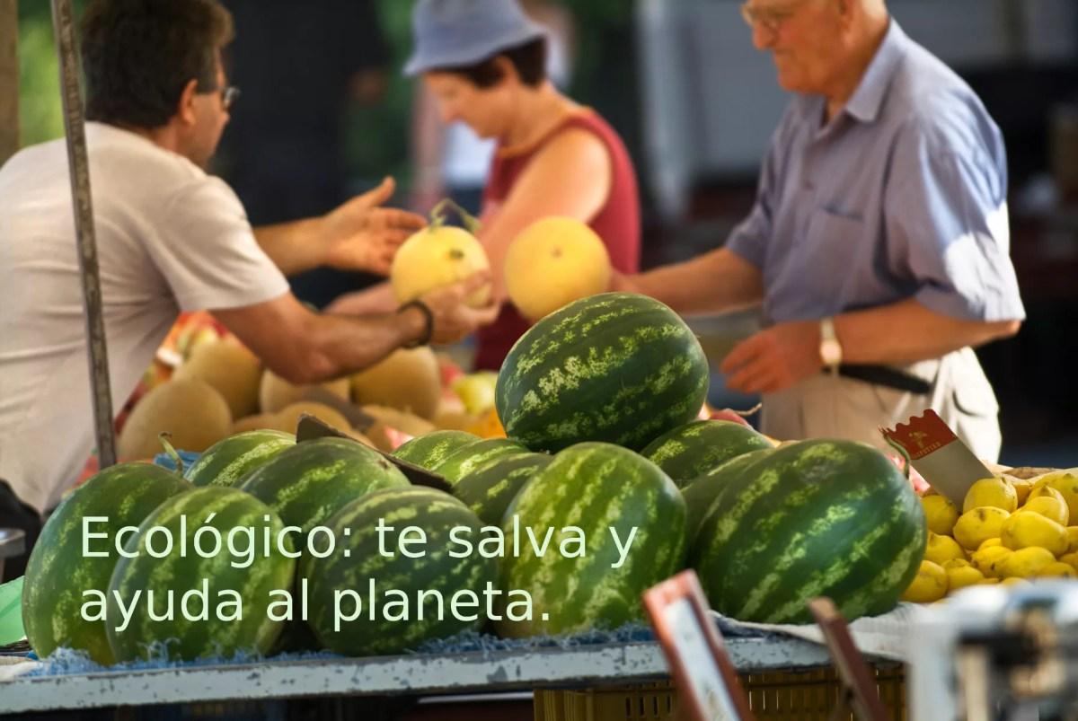 Ecológico: te salva y ayuda al planeta