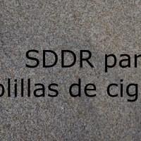 SDDR para colillas de cigarros