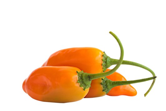 Ají amarillo Mini fresco - Productos La Sarita