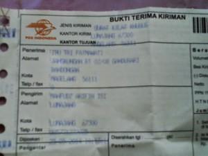 curcuma zedoaria temu putih 5