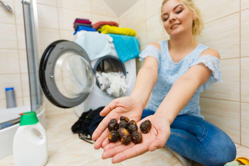 waschnusschalen waschmaschine