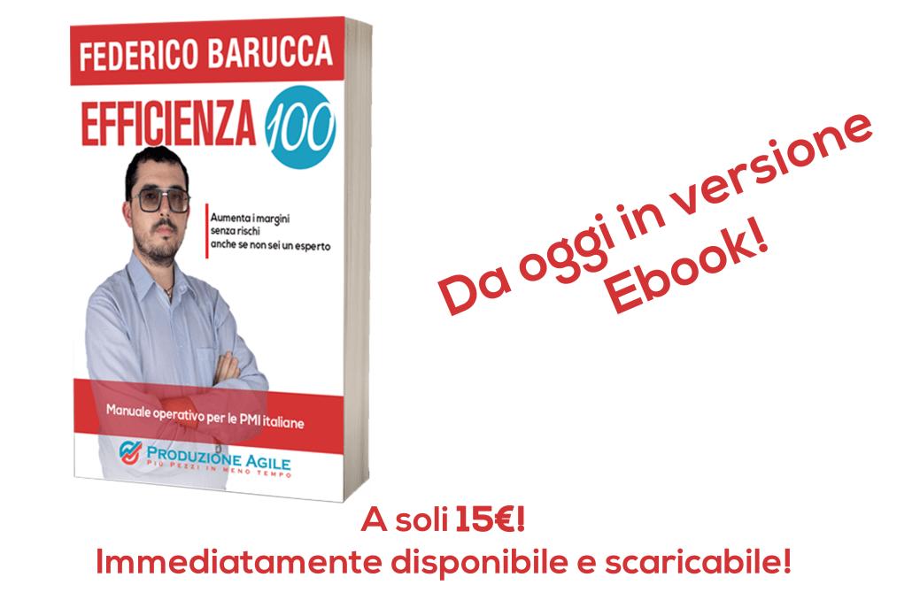Efficienza 100 versione ebook