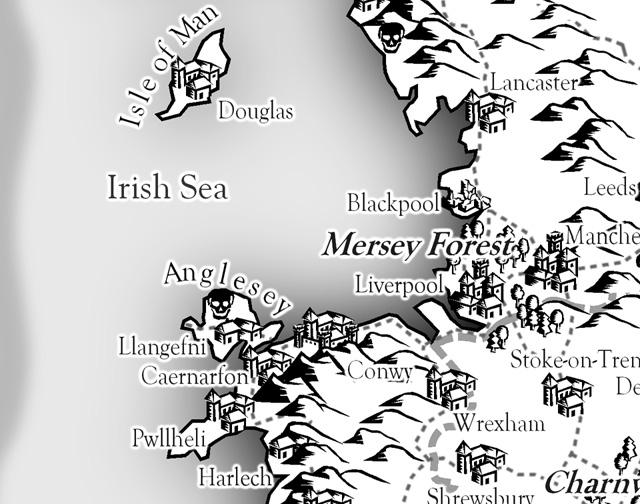Albion Detail
