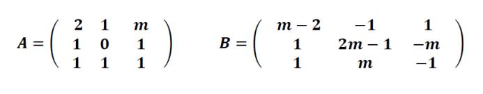 rango de una matriz 3x3 con parametros