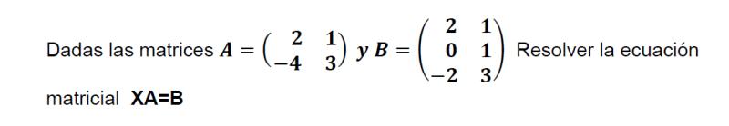 ecuaciones matriciales resueltas 2x2