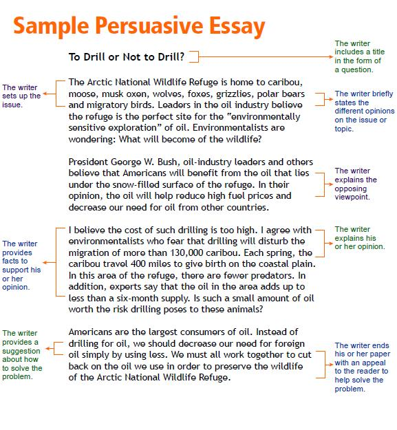 humorous essays for high school docoments ojazlink a humorous incident essay atsl ip