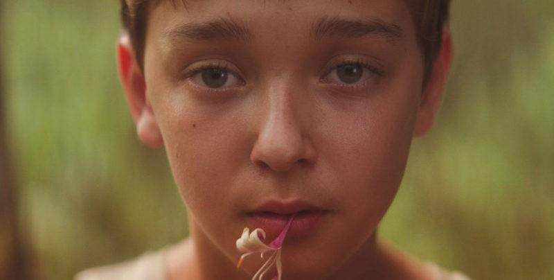 «The Strange Ones» : cauchemar fantastique et anxiogène