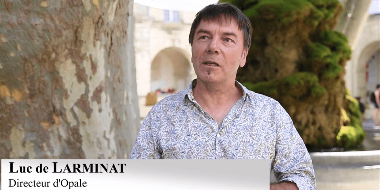 Vidéo. Opale : l'organisme qui fortifie les réseau associatifs culturels