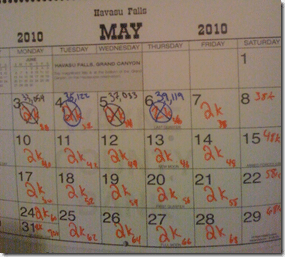 Beej May Novel Word Count