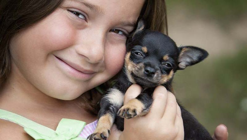 What is the best age to neuter a dog?