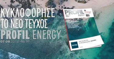 Profil Energy 91