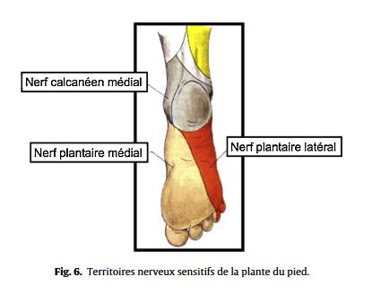 douleur sur le cote exterieur du pied
