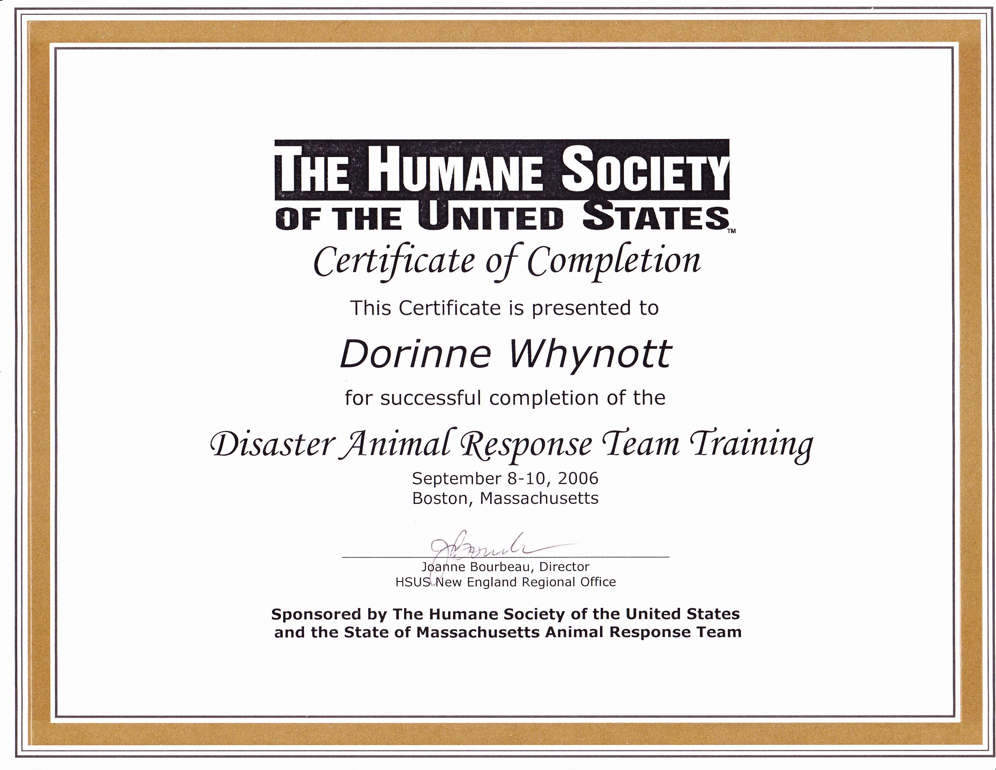 Professional Dog Sitting Archives Award Winning Dog Walking Cat