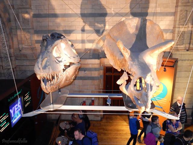 Dinosauri natural history museum londra