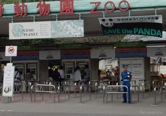 diario di viaggio tokyo ueno zoo