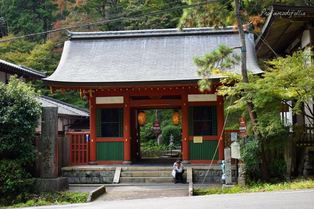 Visita ad Arashiyama: ingresso al tempio Otagi Nenbutsu-ji