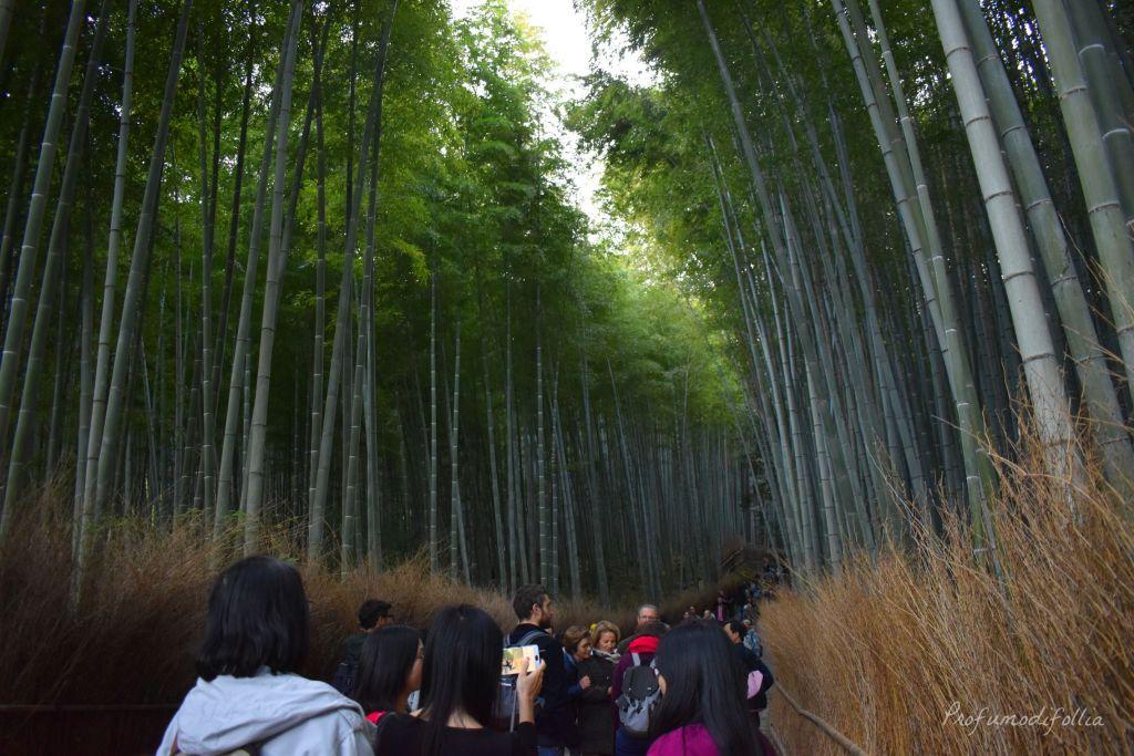 Visita ad Arashiyama: foresta di bambù con sentiero invaso dai turisti