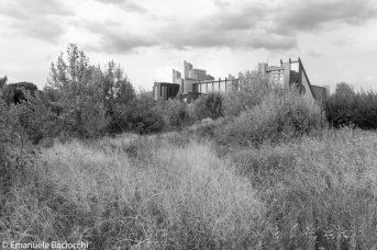 Quartiere Novoli. Terreno abbandonato, sullo sfondo il palazzo di Giustizia