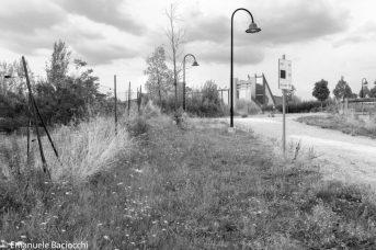Area perimetrale del parco di San Donato a Novoli; al di là della rete un terreno abbandonato all'incuria. Sullo sfondo il palazzo di Giustizia.