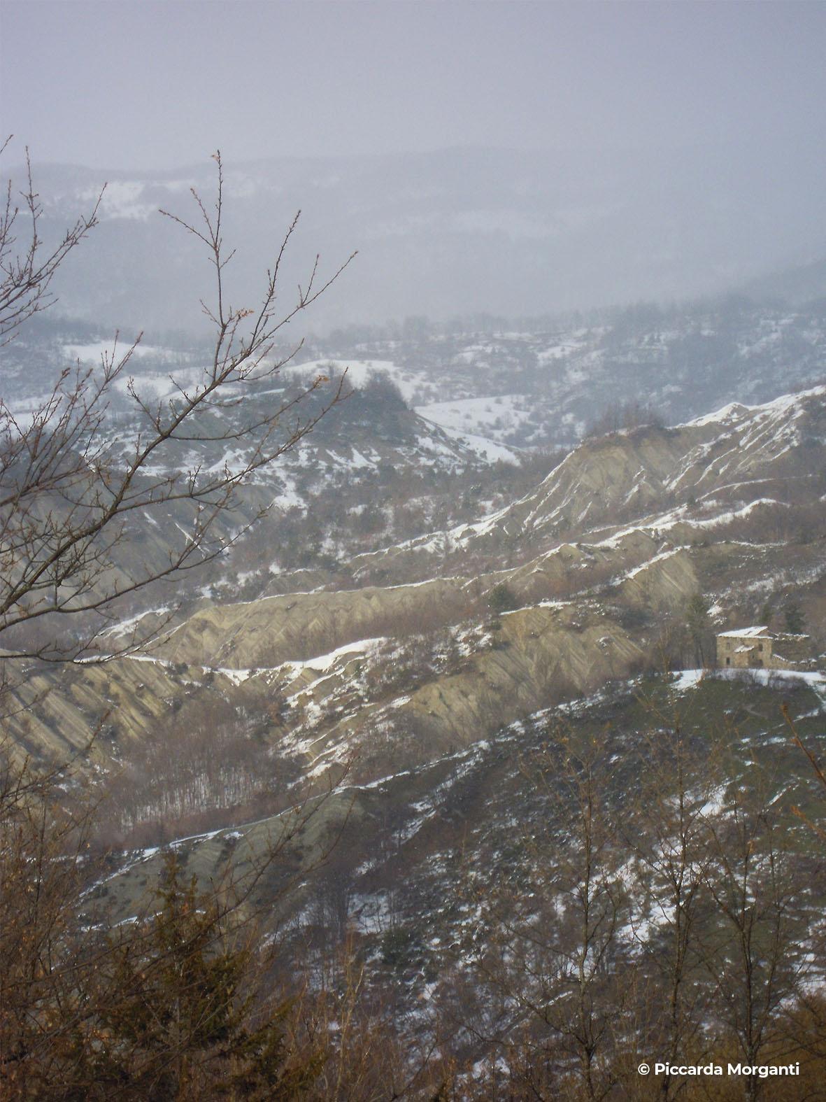 Vallesanta - Progettoidea chiusi della verna (©piccarda morganti)