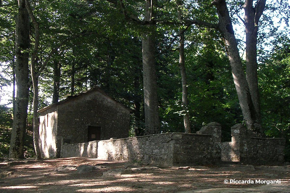 monte penna - Progettoidea chiusi della verna (©piccarda morganti)1