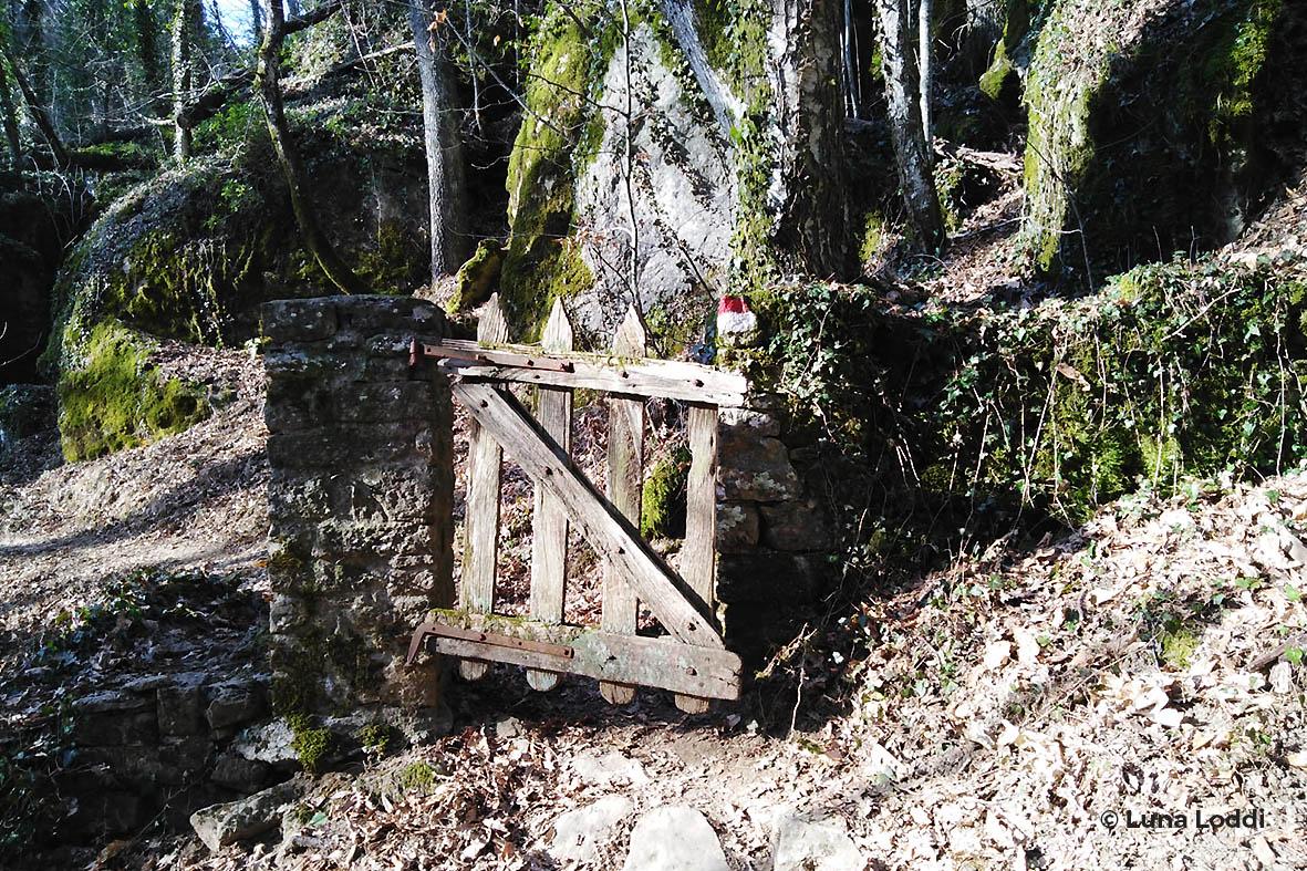 sentieri naturalistici - Progettoidea chiusi della verna (©luna loddi)