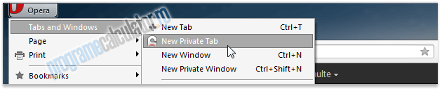 New Private Tab
