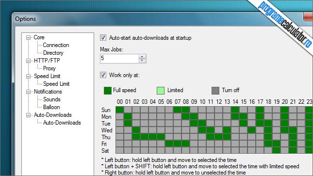 Mp3FreeZe Downloader - Programare