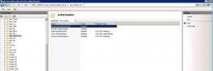 IIS AppWebService autentycja