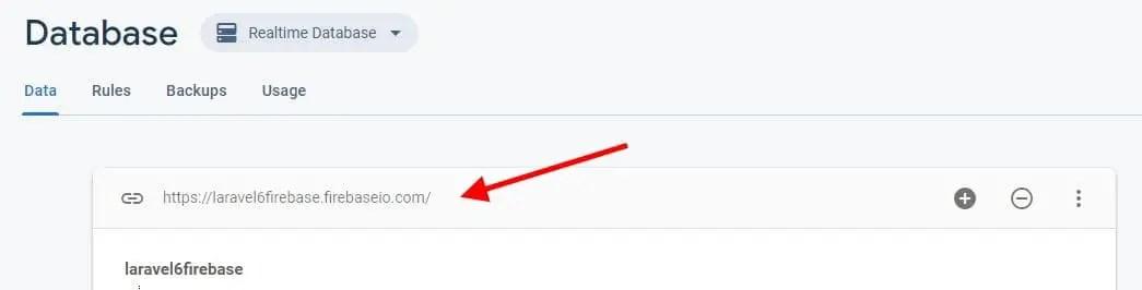 Laravel 6 Firebase URL