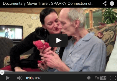 Dementia films and documentaries (2/6)