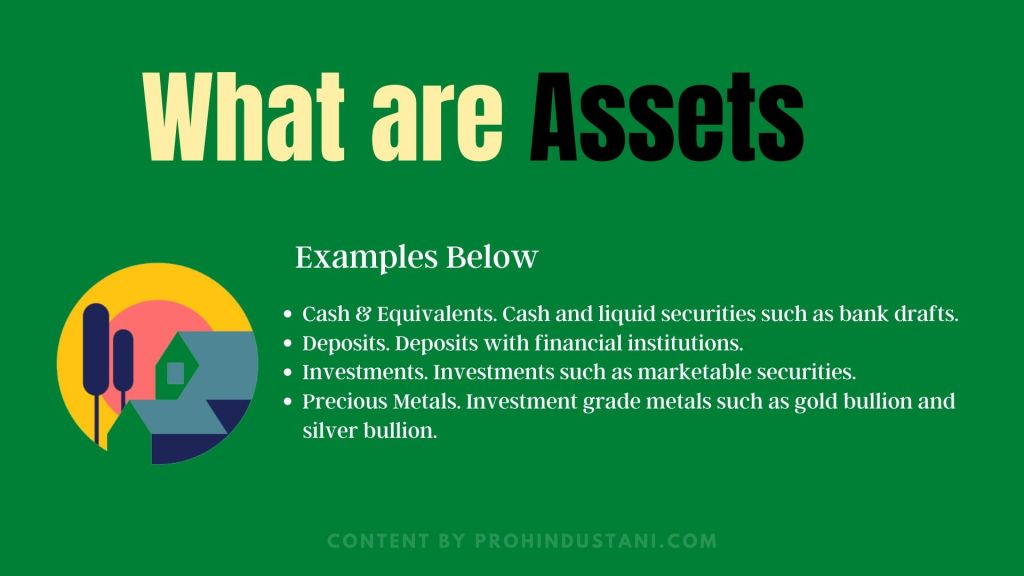 Whatare Assets