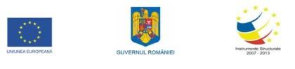 sigla-UE-Romania-IS2013