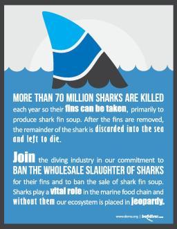 SharkFinBan_Poster-page-001