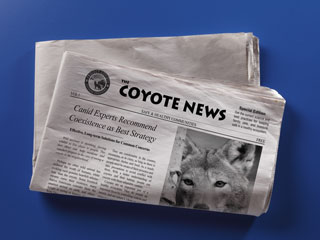 Coyote Factsheet for Communities