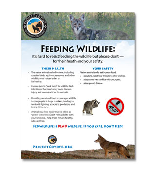 Don't Feed Wildlife Sign