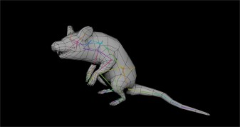 Giant Rat Rig
