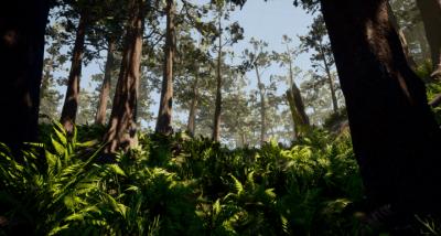 Environment Art | Test Scene
