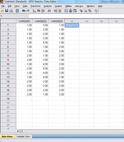 Data View in SPSS