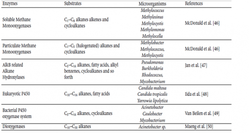 Various types of enzymes which led to the microbial degradation of oil in case of oil spills