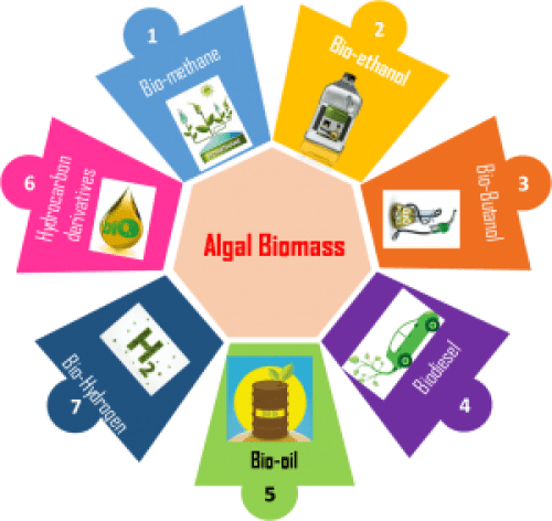 By-products from harvesting of Algal Biomass